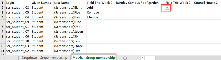 Matrix -Group membership view in the Excel file