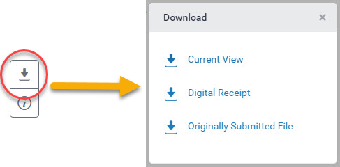 Options for download in Feedback Studio