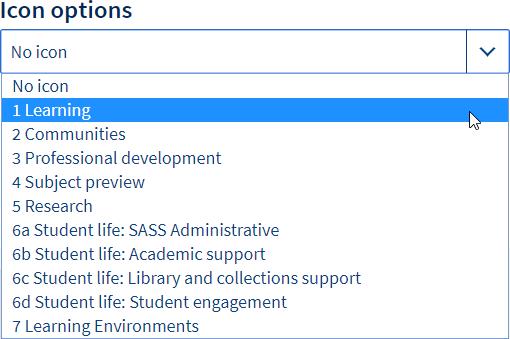 Icon options