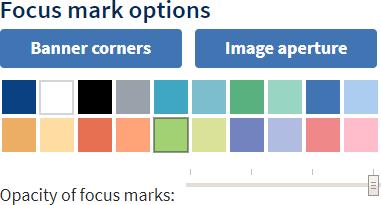 Focus mark options