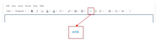 The Echo icon